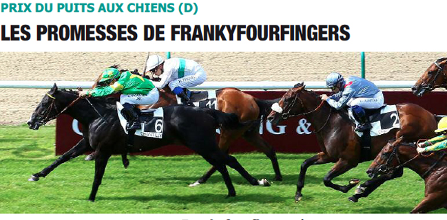 Frankyfourfingers chantilly